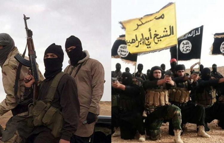 EI y Al Qaeda compiten por el hijo de Bin Laden