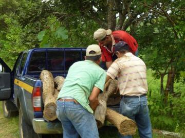 Panamá y Darién, con más denuncias ambientales