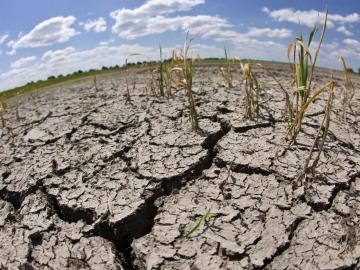 Expertos preocupados por efectos cambio climático sobre océanos y criósfera