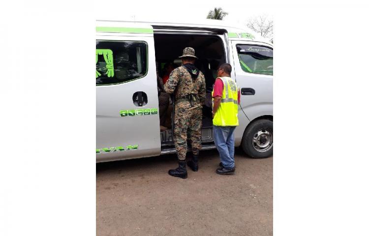 Operativos contra el tráfico de especies silvestres en Darién