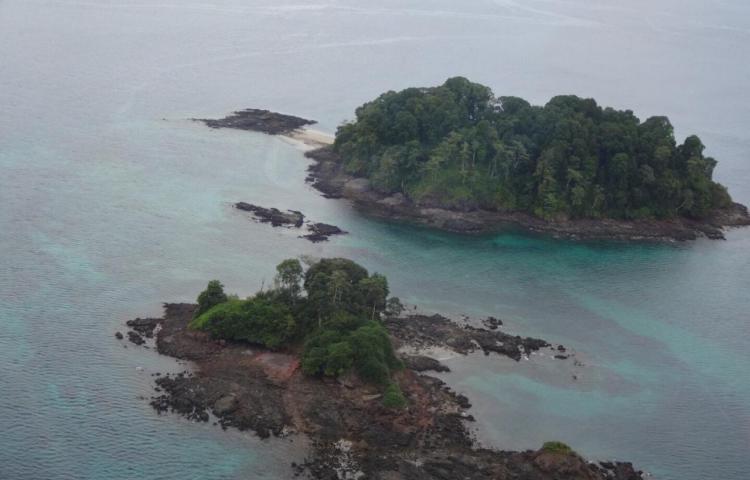 Smithsonian financiará estudio de impacto del buceo deportivo en Parque Coiba