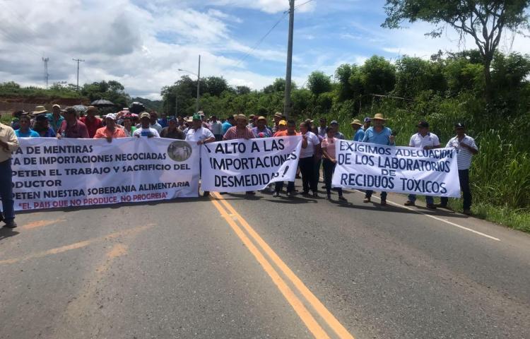 Productores de Chepo se unen para protestar en contra las importaciones