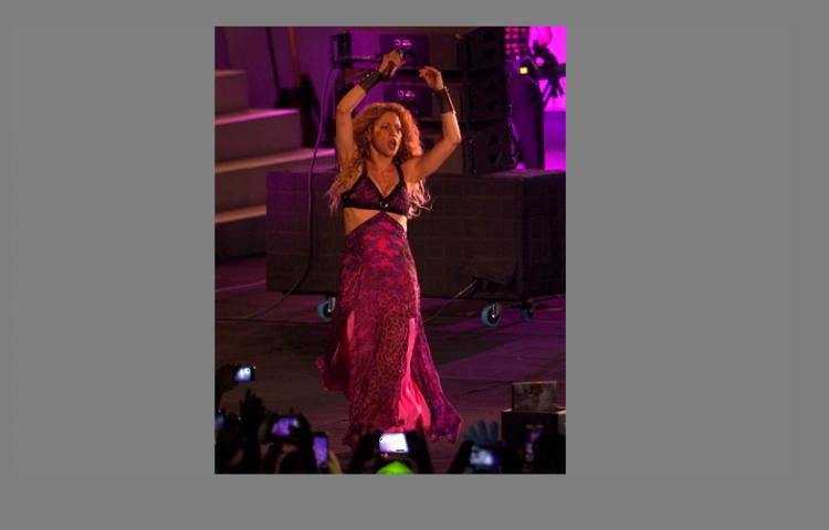 Shakira podría estar embarazada a pesar de negarlo
