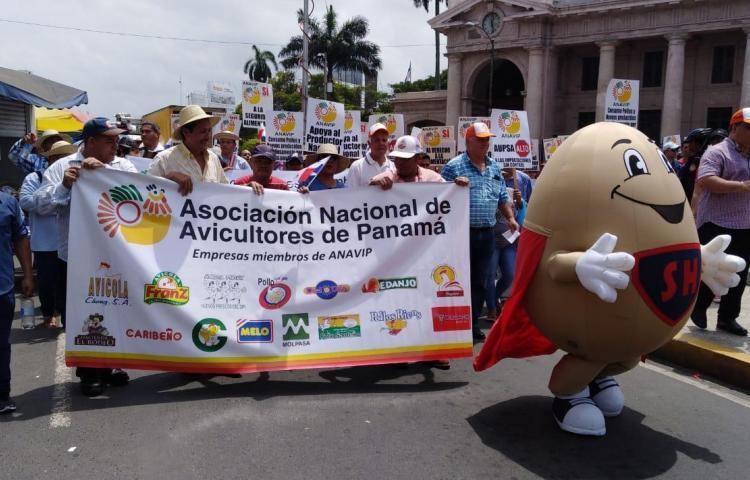 Miembros de la ANAVIP protestan en la plaza 5 de Mayo contra las importaciones