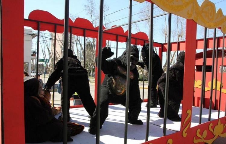 Pillan a circo con animales falsos