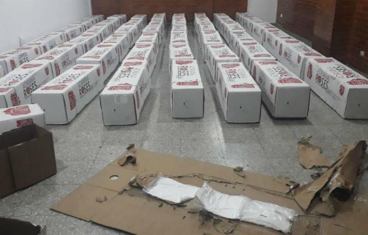 Decomisan en Colombia 50 kilos de cocaína que iban a enviar a Rusia en flores