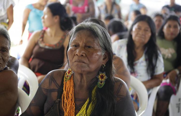 Eje social, primer punto de ataque de plan de desarrollo indígena de Panamá