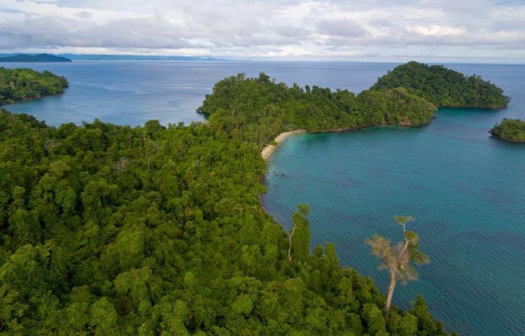 Senacyt plantea crear laboratorio en la isla de Coiba