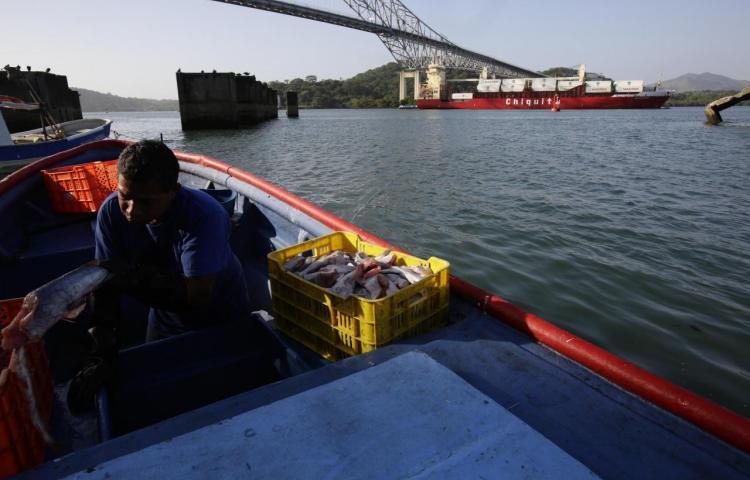 """Los pescadores que """"desaparecerán"""" por el cuarto puente del Canal de Panamá"""