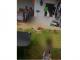 Identifican residencia donde ocurrió supuesto maltrato a menores