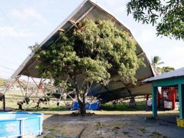 Árbol evitó una desgracia en una vivienda de Chame