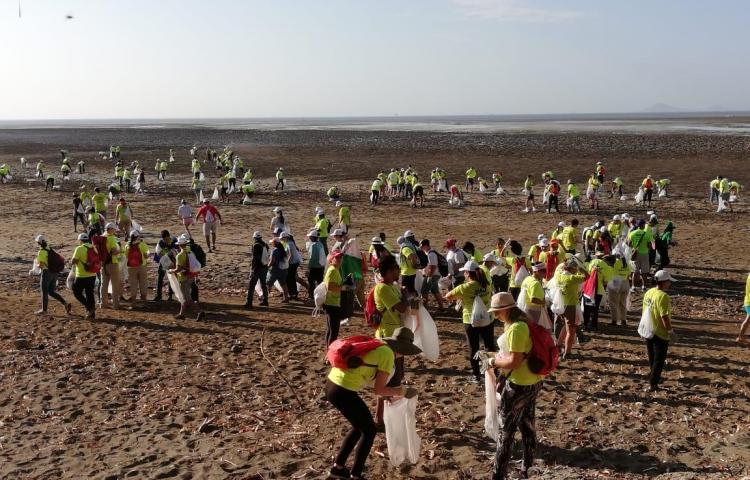 Voluntarios de la JMJ vivieron una mañana ecológica