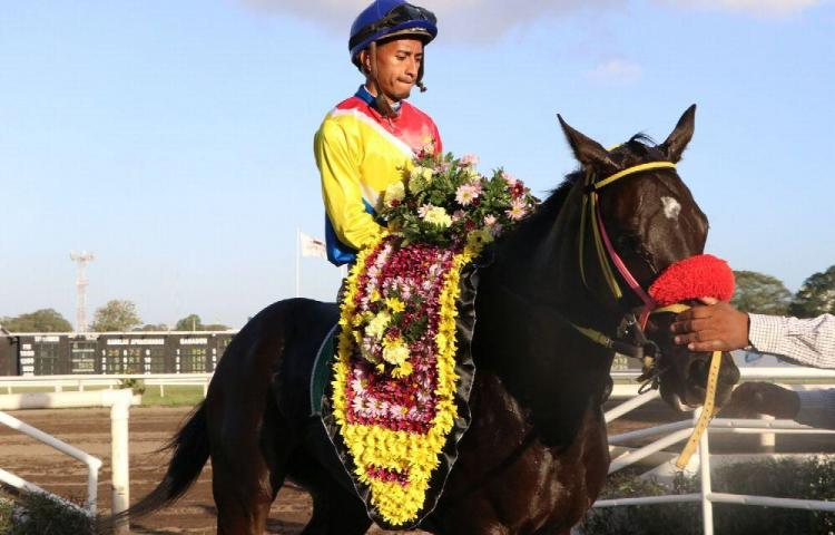 'Kuna Alegre' busca otra corona