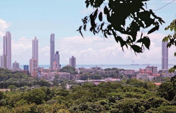Parques de la ciudad se unen a reto mundial para contar fauna y flora