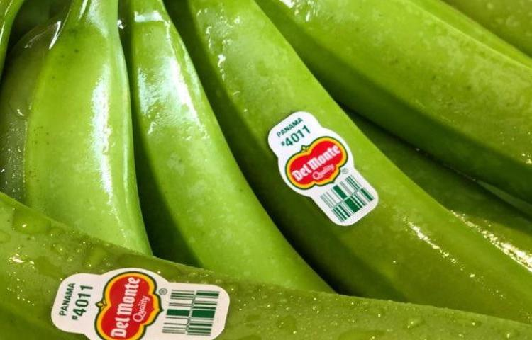 Reactivan producción bananera con envío de primer embarque a EE.UU.