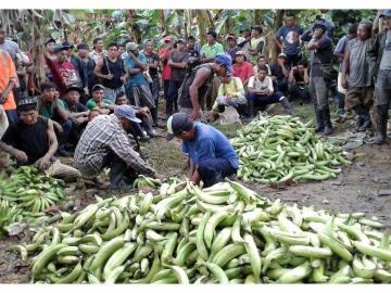 Apoyan a comunidades en Guna Yala