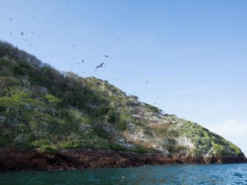 """Santuario de aves está """"en peligro"""" por culpa de terminal petrolera"""
