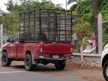 Muere un niño de 2 años tras ser atropellado en La Pintada