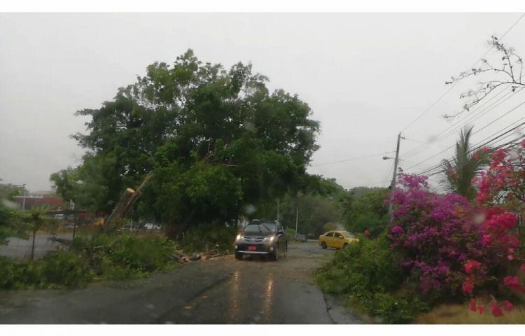 Primeras lluvias en Azuero causan estragos