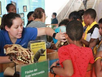 El Biomuseo promueve sus exhibiciones con entradas gratuitas