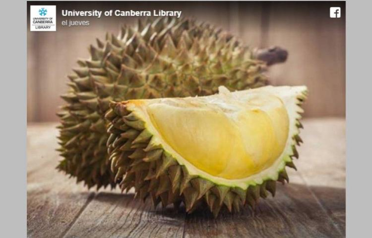 Evacuan biblioteca por fruta apestosa
