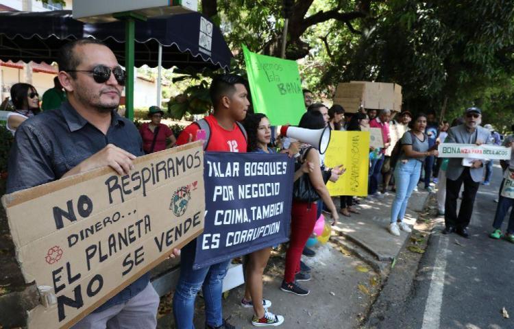 Isla Boná podría ir a extraordinarias para ser área protegida