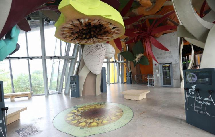 El Biomuseo abrirá sus tres nuevas galerías