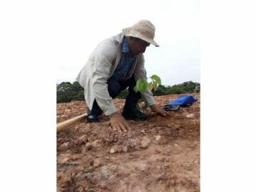 Reforestan 3.7 hectáreas de terreno árido en Aguadulce