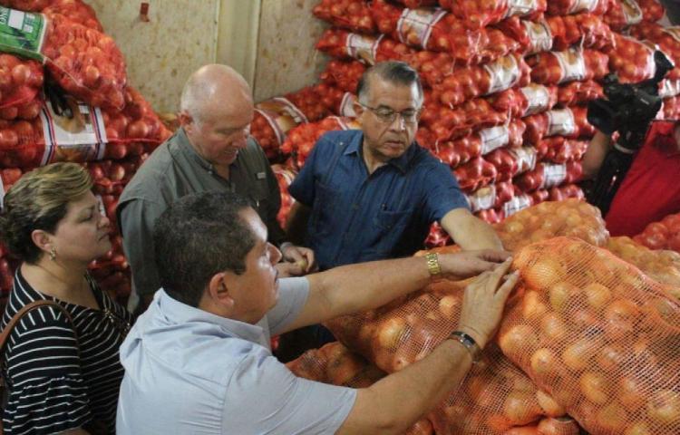 Lluvias que caen sobre el país afectan la producción de cebolla