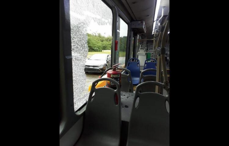 Mi Bus reporta 306 casos de vandalismo