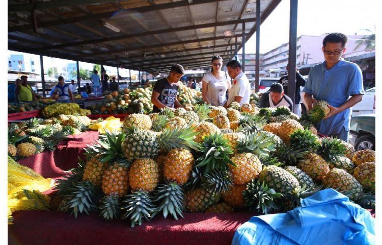 Prohibir las bolsas de plástico, un gran paso de Panamá, dice CCIAP