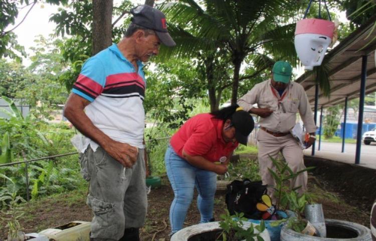 Van tres muertes por dengue en el país