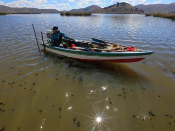 La muerte lenta del Titicaca, el lago sagrado de Los Andes