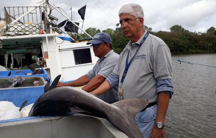 Caen Ticos por pesca ilegal en aguas panameñas