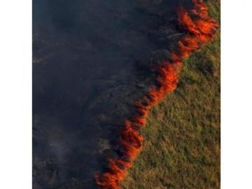 La Amazonía está en llamas