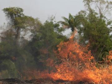 Brasil despliega a sus militares para la lucha contra el fuego en la Amazonía