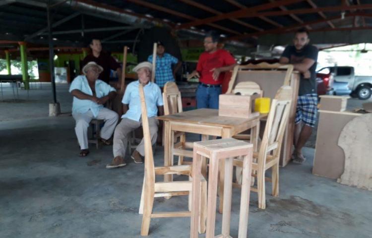 Ebanistas en alerta por prohibición de tala de árboles