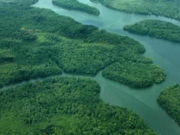 Rearme de guerrilla colombiana aumenta inseguridad para migrantes en Darién