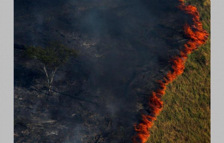 Piden apoyo de naciones ante el incendio forestal entre Brasil y Bolivia