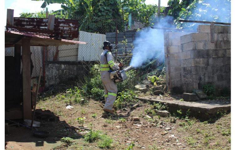 Alarma: Salud reporta 1,220 casos de dengue