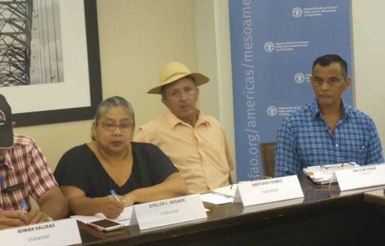 Analizan anteproyecto para el desarrollo de la Agricultura Familiar