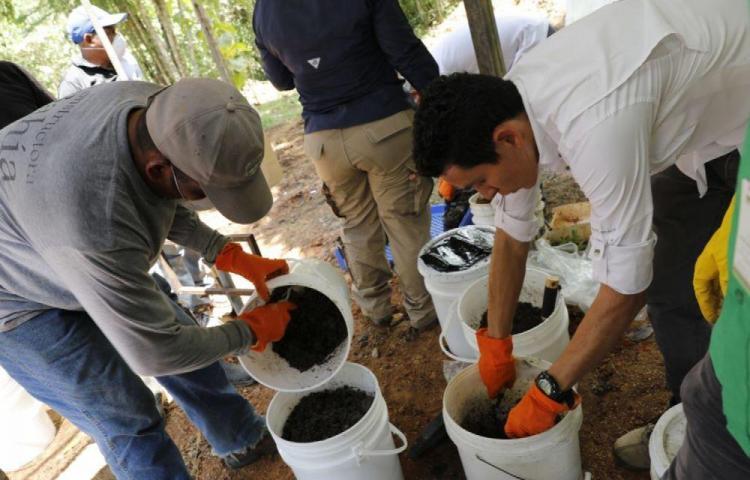 Usarán lodo de planta de tratamiento para abono