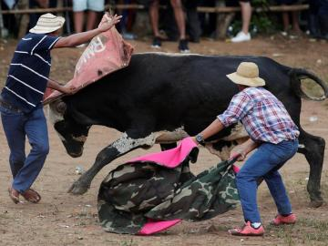 Espectáculo de toros y hombres recios anima fiesta más tradicional de Panamá