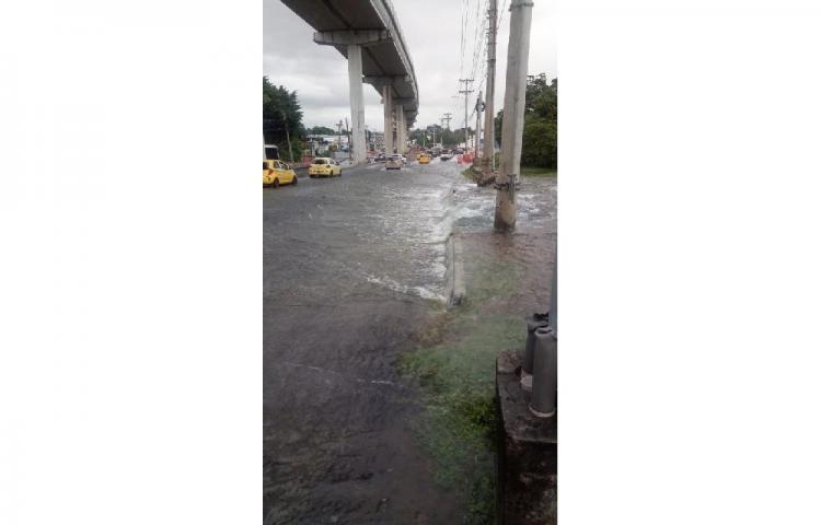 Varios sectores de Panamá sin agua potable