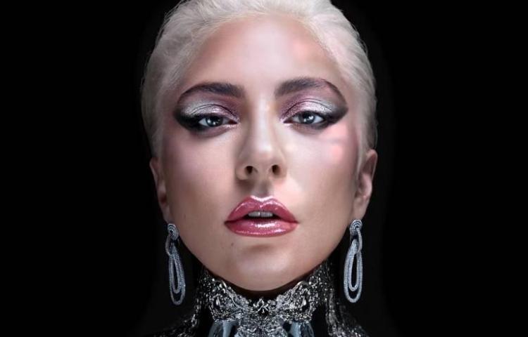 Lady Gaga lo invitó al escenario y la hizo caer