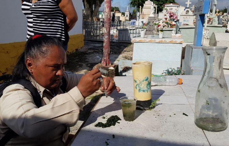 Cementerios están llenos de criaderos del Aedes aegypti