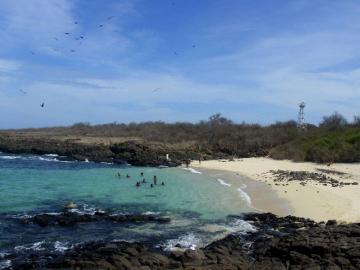 Mi Ambiente busca debatir plan de manejo de refugio isla Iguana