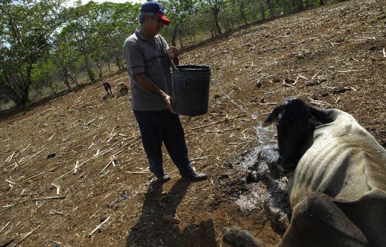 Declaran estado de emergencia por sequía