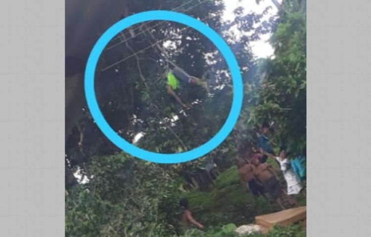 Se electrocutó cuando podaba las ramas de un árbol