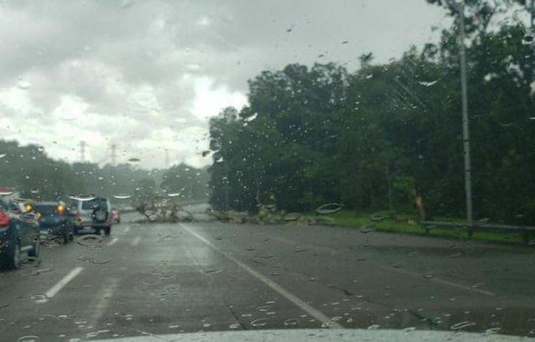 Lluvias dejan calles anegadas en la ciudad capital